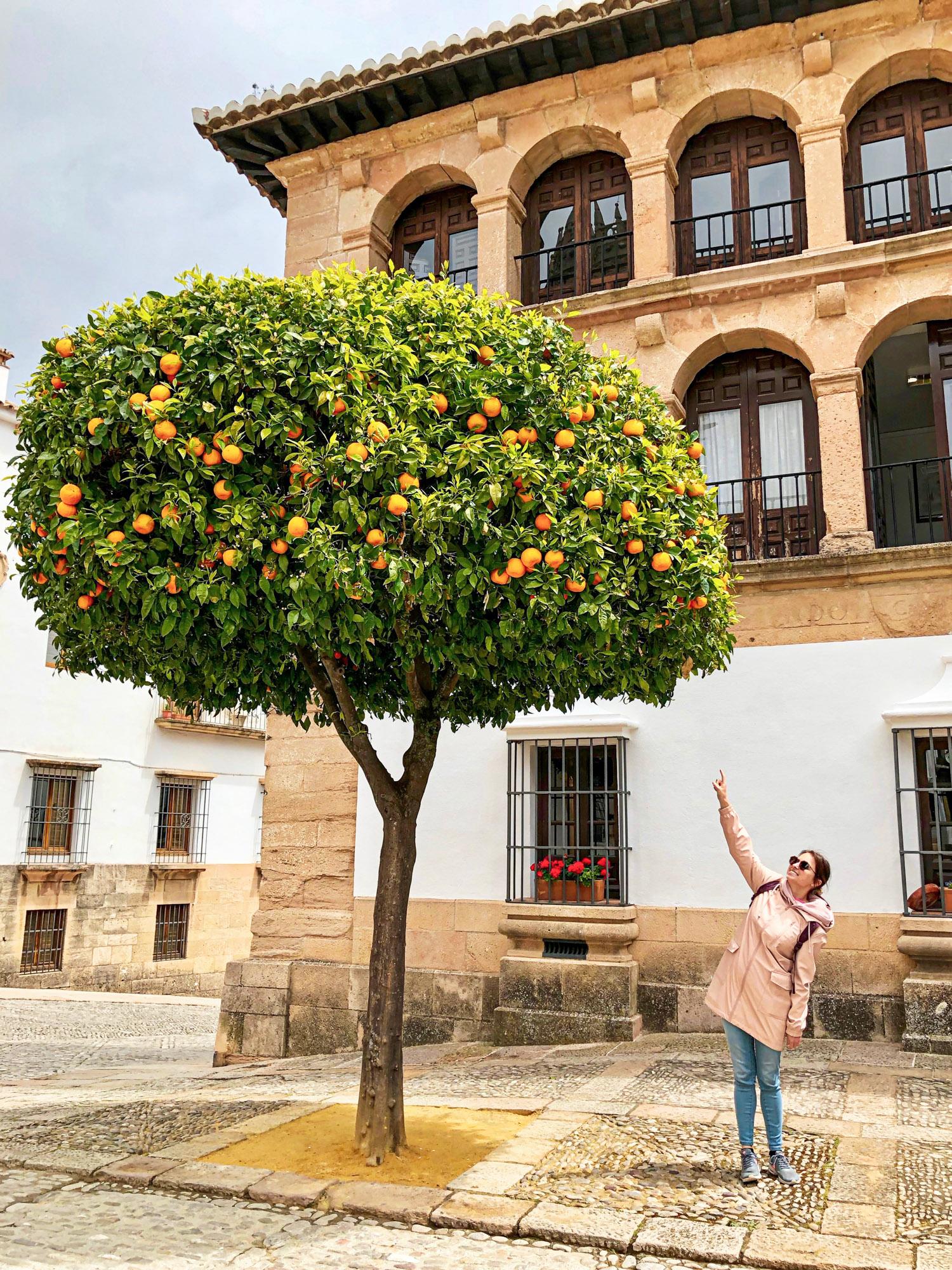 Ronda - Costa Del Sol - Malaga - Espagne - Anne-Laurence Jean