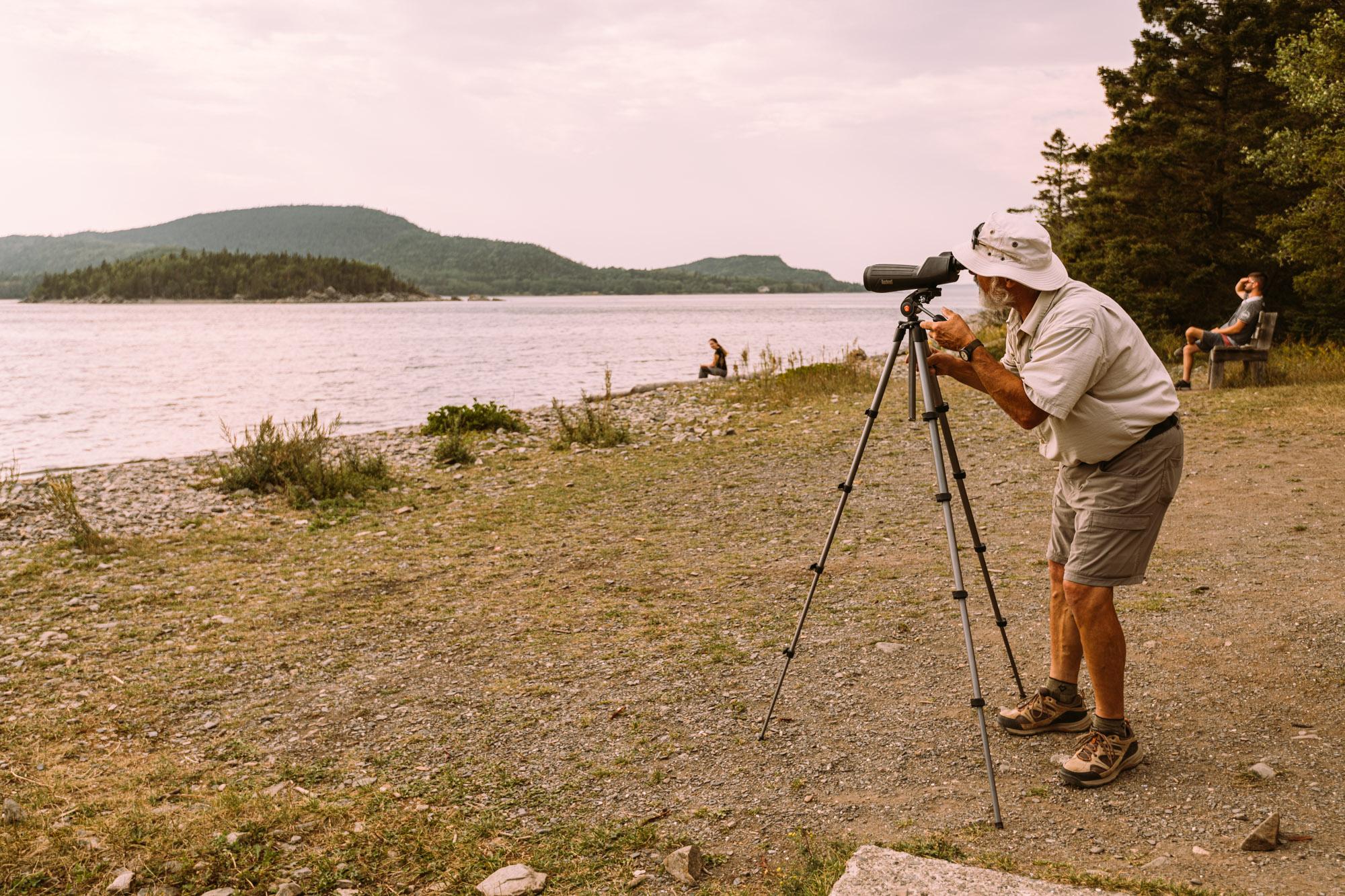 Observation de phoques - Parc national du Bic - Parcs Nationaux - Sépaq - Tourisme Bas-Saint-Laurent - Jeff On The Road