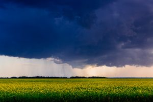 Countryside — Winnipeg — Manitoba — Jeff Frenette Photography