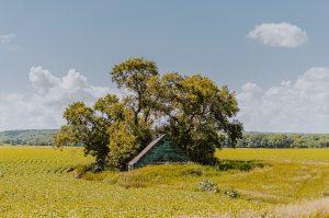 Countryside — Winnipeg — Manitoba — Jeff Frenette Photography