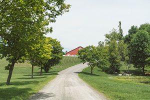 Brasserie Wilsy - Quoi faire dans les Basses Laurentides - Tourisme Québec