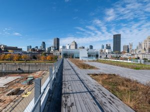 Apple iPhone 12 Pro VS DSLR Camera Nikon D850 - Real Life Review - Ultra Wide Angle Landscape 0.5X