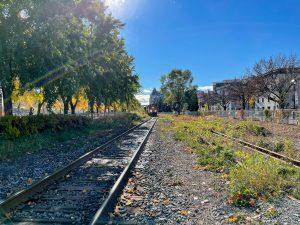 Apple iPhone 12 Pro VS DSLR Camera Nikon D850 - Real Life Review - Landscape Wide Angle 1X